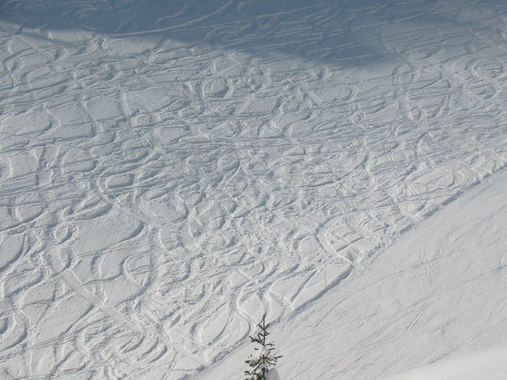 שבילים בשלג