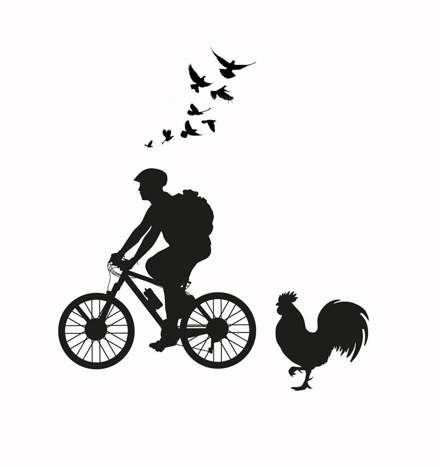 איש, אופניים, תרנגול
