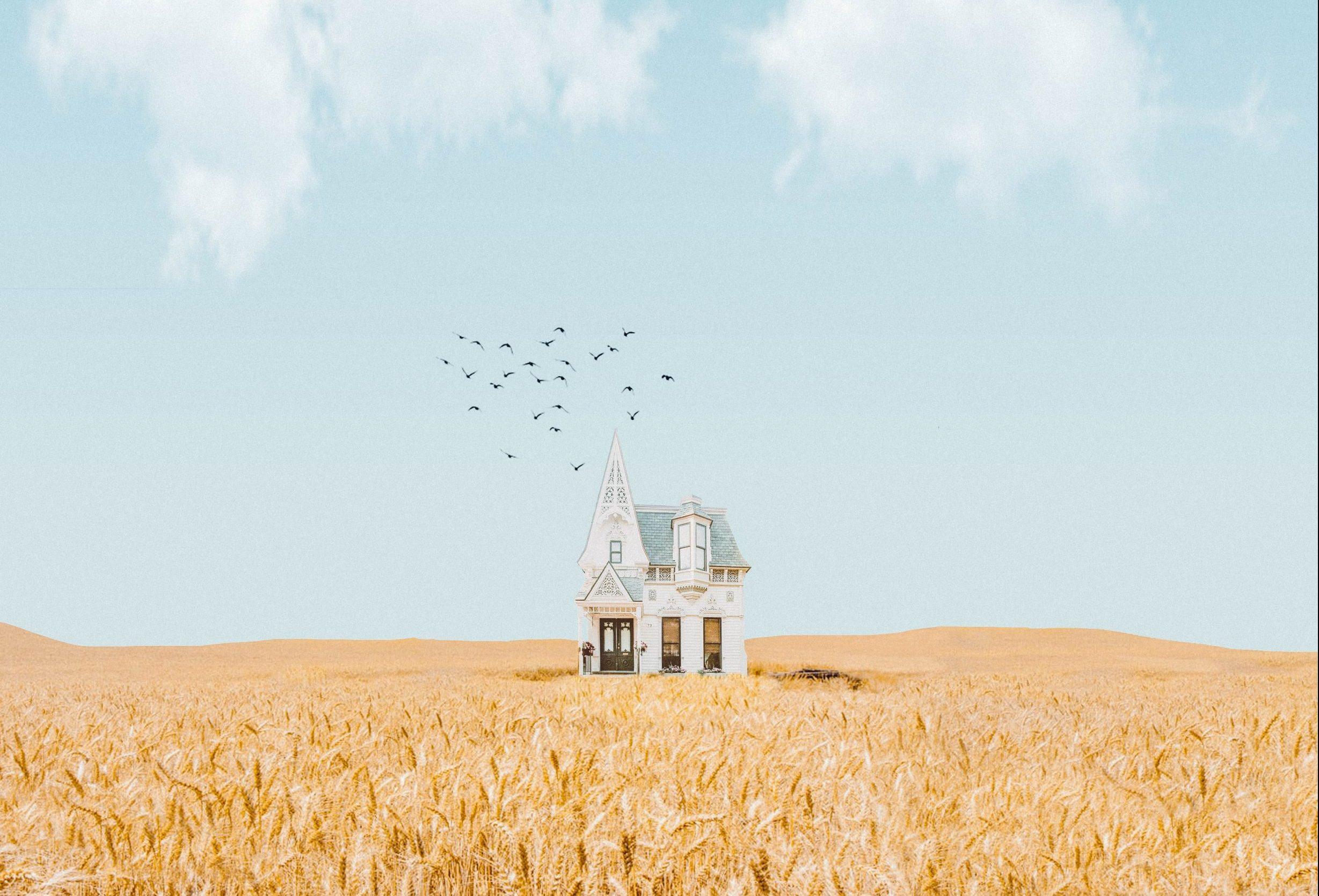 בית מבודד בשדה חיטה