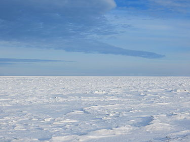 תמונה של האזור הארקטי