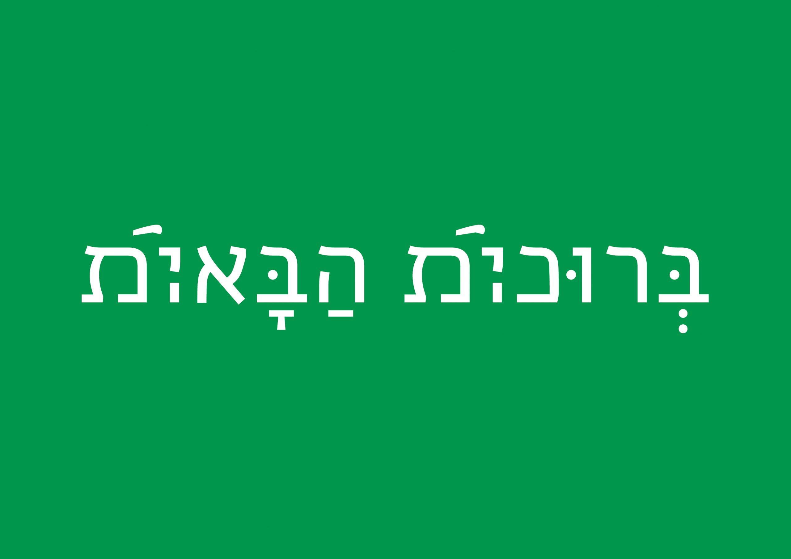 כיתוב בעברית רב מגדרית